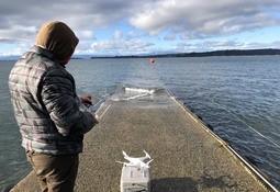 Nuevas aplicaciones chilenas buscan mejorar gestión de infraestructuras acuícolas