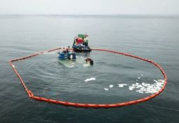 Autoridad Marítima denuncia trazas de  combustible ligadas a pontón salmonicultor