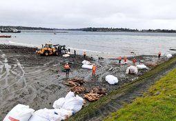 Muelle colapsa en Calbuco con más de 300 toneladas de alimento para salmón