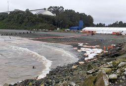 Investigan por daño ambiental vertimiento  de 300 toneladas de alimento para salmón