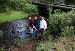 Araucanía: Investigan efectos en el medio ambiente por uso de sal en pisciculturas