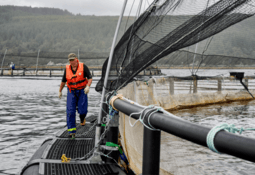 Mowi toma medidas en Escocia por centro que se movió 800 metros ante tormenta