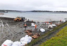 Muelle de carga Cabo Froward sería reflotado en septiembre tras colapso
