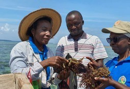 UN hears how seaweed farming relieves poverty