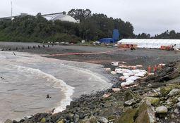 Ordenan retiro de alimento para peces que permanezca en medio marino de Calbuco