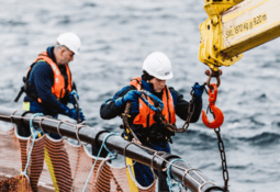 Marine Scotland surveys Covid-19 impact on aquaculture
