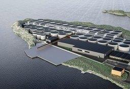 Ny stor kontrakt på betongelementer til Salmon Evolution og Artec Aqua