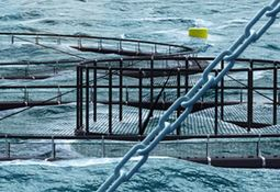 Rigging supplier bids to give US AQUAA Act a lift