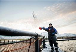 Eidsfjord Sjøfarm økte volumene i sjø