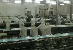 La negociación colectiva entre Blumar y trabajadores de planta salmones Talcahuano