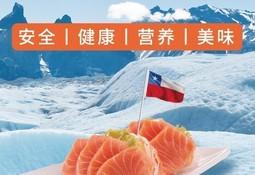 Productores de salmón chileno activan campaña de marketing en China