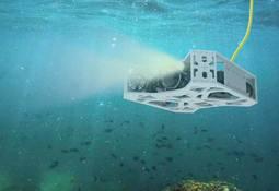 Ersil y Grupo IEM desarrollarán tecnologías con inteligencia artificial para salmonicultura