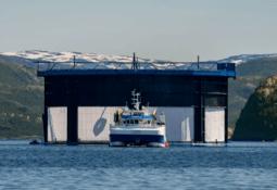 Norwegian salmon farmers in merger talks