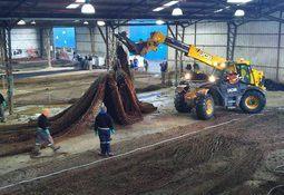 Construirán moderna planta para redes salmonicultoras en Magallanes