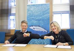 Skal samarbeide om havbasert fiskeoppdrett