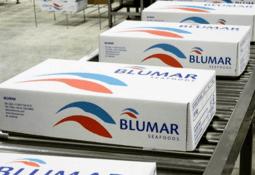 Bancos dan espaldarazo a Blumar con financiamiento para enfrentar la pandemia
