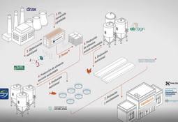 BioMar se une a consorcio para transformar CO2 en proteína sostenible (video)