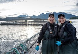 Productores de salmón prevén crear 10 mil puestos de trabajo en Columbia Británica
