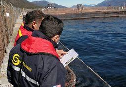 Yadran cosecha totalidad de salmones en centro positivo a ISA de Aysén