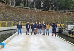 Salmones Antártica comenzará a operar equipo de secado de lodos en piscicultura