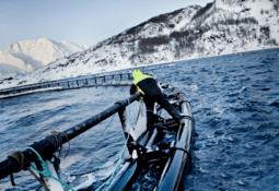 Grieg raises NOK 500m under green bond