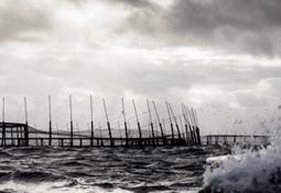Huon pierde hasta 130 mil salmones por segundo escape en nueve días