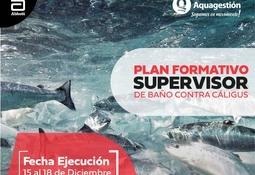 Aquagestión lanza plan para formación de supervisores de baños contra Caligus