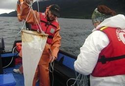 Emprendimiento chileno realiza monitoreo integral de FAN a bordo de wellboats
