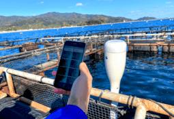 Desarrollador tecnológico innova con medición portátil del tamaño de los peces