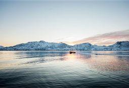 Empresas de productos del mar se unen para lograr una industria más sostenible