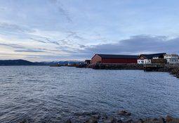 - Blir verdens største anlegg for produksjon av torskeyngel