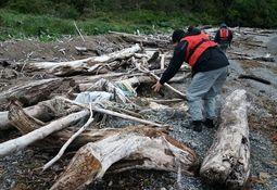 Denuncian diversos residuos salmonicultores en Parque Nacional Laguna San Rafael