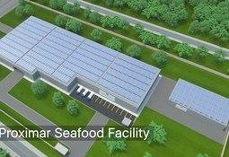 Nuevo proyecto de salmón en tierra de Japón recauda US$46,7 millones