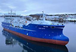 Mowi celebrará contratos de largo plazo para operar wellboats de alta capacidad