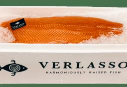 Verlasso celebra 10 años de operación logrando cosechar 5 millones de salmones