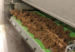 Næringsstoffer fra lakseoppdrett kan bidra til sirkulær økonomi