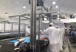 Cuatro salmonicultoras obtienen certificación de operaciones seguras en plantas