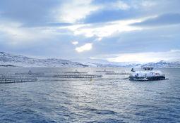 NRS selger eierandel i Måsøval