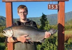 'Record price' for 15.3kg farmed salmon