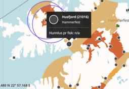Rømming fra Cermaq-lokalitet