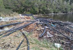 Salmonicultores y pescadores artesanales se unen para limpiar residuos en Seno Elisa