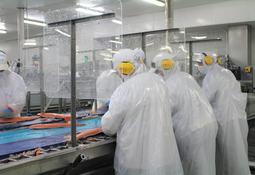 Autoridad rusa levanta restricciones a nueva planta de salmonicultora chilena