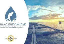 Organizaciones chilenas postulan a ocho cupos en The Global Aquaculture Challenge