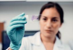 Chilean fish farming pathologist VeHiCe opens Scotland lab