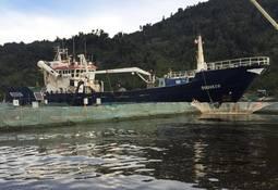 Autoridad investiga atrasos de Salmones Camanchaca en retiro de mortalidad