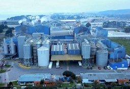 Fondo de Comunidad Cargill beneficiará a 4.000 personas de Coronel y Calbuco