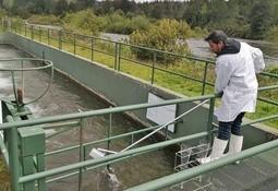 Desarrollan nueva tecnología para tratamiento de residuos sólidos de pisciculturas