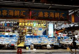 ¿En qué va la suspensión china para importación de salmón congelado chileno?