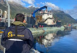 Centros de Mowi Chile reportan mortalidad masiva de salmón por FAN