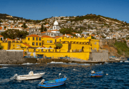 Aquaculture Europe 'can go ahead' in Madeira